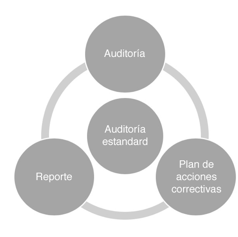Auditoria estandard